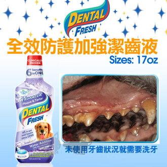 《DENTAL FRESH》全效防護加強潔齒液【狗狗專用漱口水】17oz