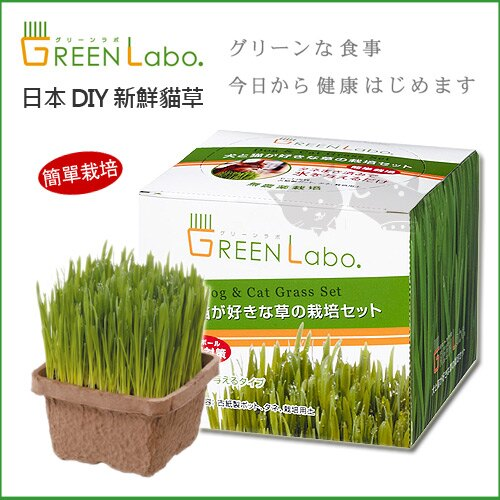 ~ Green Labo~DIY新鮮貓草 ~ 犬貓  無農藥栽培