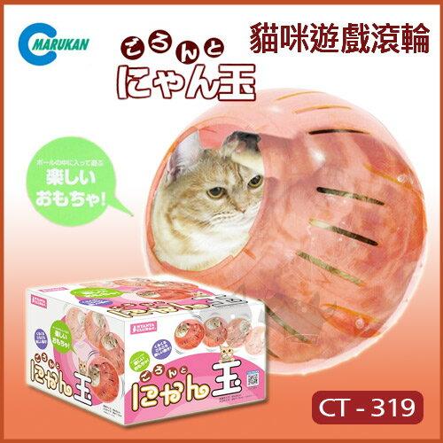 ayumi愛犬生活-寵物精品館:《日本Marukan》可愛貓咪遊戲滾輪CT-319貓玩具