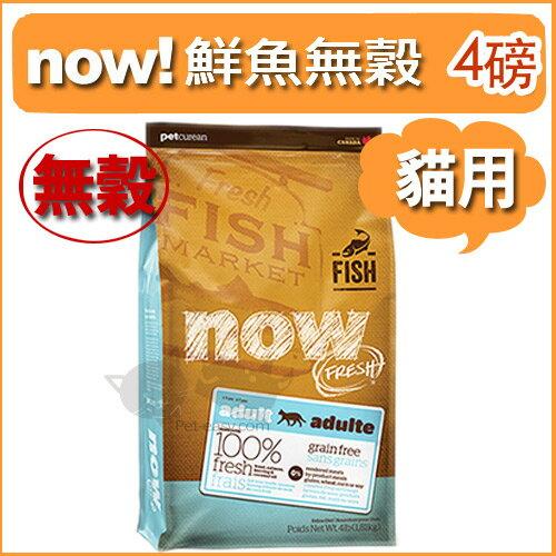 《NOW!》Fresh鮮肉無穀天然糧 - 鮮魚無穀成貓配方4磅 / 貓飼料