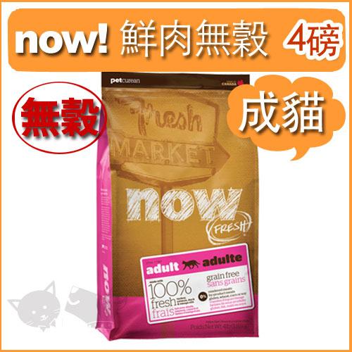 《NOW!》Fresh鮮肉無穀天然糧-成貓配方 4磅 / 貓飼料