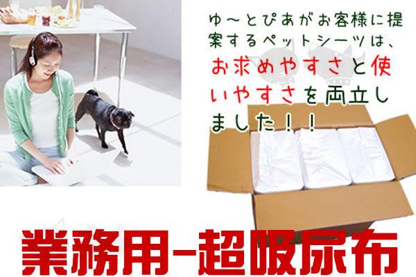 ayumi愛犬生活-寵物精品館:【寵物尿布】限量提供A級業務用超吸尿布好用看得見!4包(200片)
