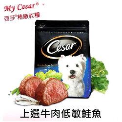 《 Cesar西莎 》 精緻乾狗糧狗飼料/全新上市[上選牛肉低敏鮭魚]