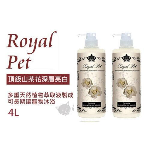 《Royal Pet 皇家寵物》天然草本精華沐浴乳-頂級山茶花深層亮白4L