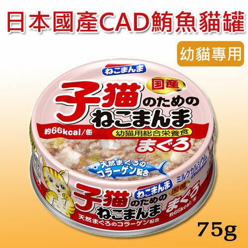 【日本nekomanma】CAD幼貓罐專用罐75g