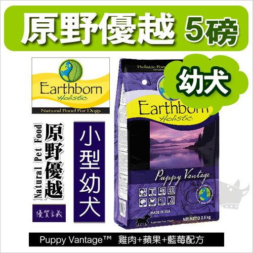 《 Earthborn原野優越 》小型幼犬配方 [雞肉+鮭魚+燕麥] - 5磅 (2.27KG) / 美國進口