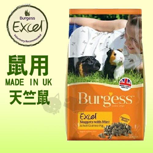 ayumi愛犬生活-寵物精品館:《英國伯爵Burgess》高機能鼠飼料-天竺鼠2kg