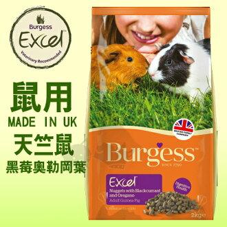 《英國伯爵Burgess》高機能鼠飼料 - 天竺鼠 (黑莓&奧勒岡葉) 2kg