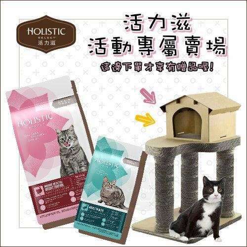 HolisticSelect活力滋〔活動專屬賣場,5磅+11.5磅送紙板貓跳台〕