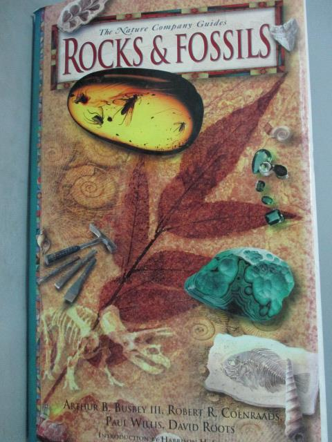 【書寶二手書T1/歷史_WGI】Rocks and Fossils_David Roots