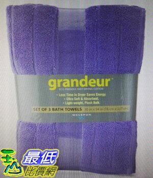 [COSCO代購] W97399 Grandeur快乾浴巾三入組