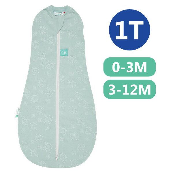 【全品牌任兩件贈三角圍兜】ergoPouch ergoCocoon 二合一竹纖有機舒眠包巾1T(春.秋款)(0~3M/3-12M) 懶人包巾-煙花綠
