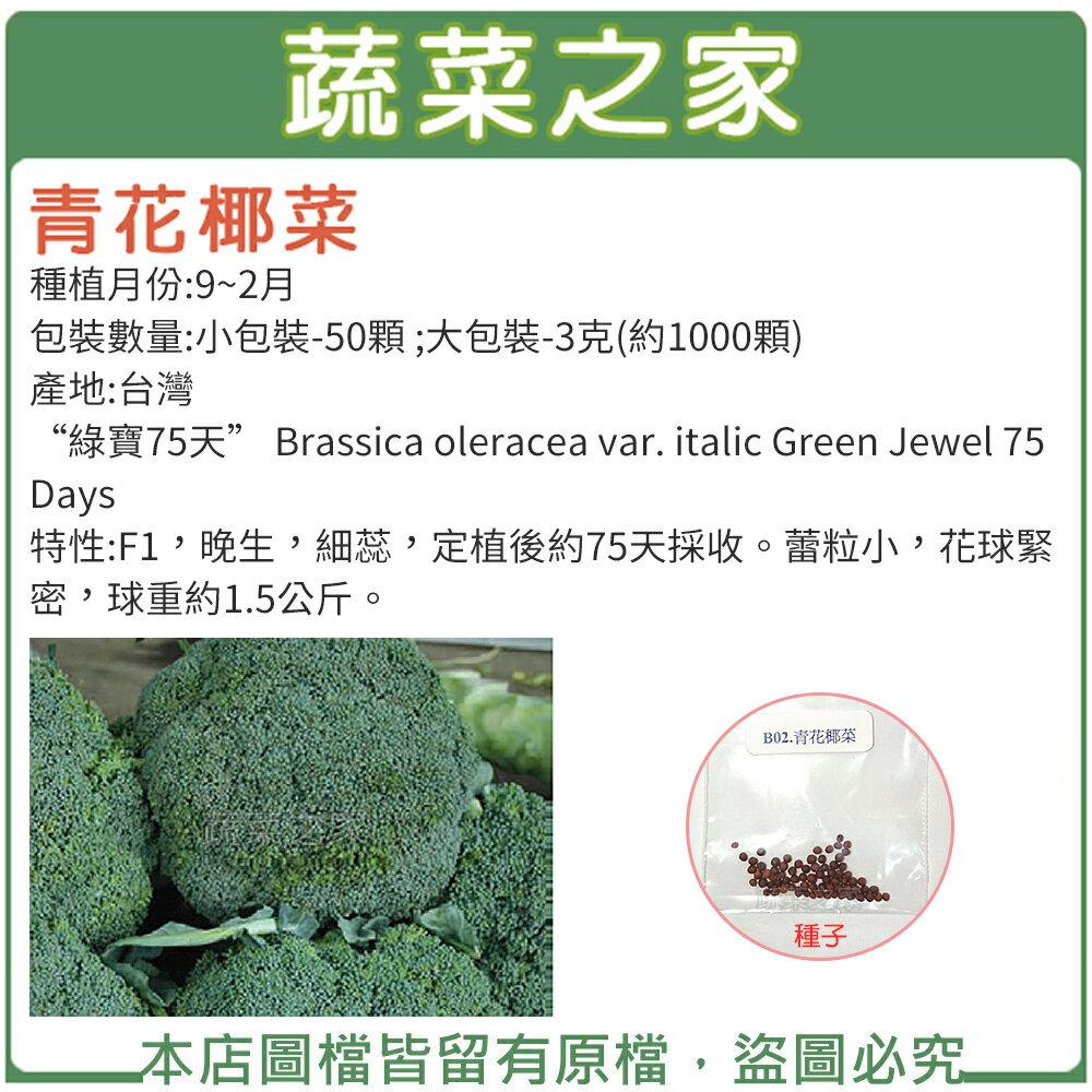【蔬菜之家】青花椰菜種子