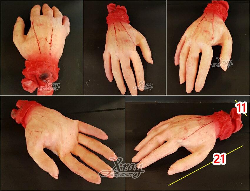 X射線【W232301】萬聖節道具擺飾-假手掌,萬聖節 / 擺飾 / 假器官 / 整人道具 / 造型配件 1