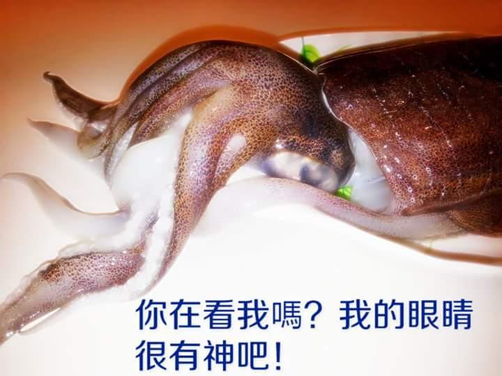 【雞籠好魚】免運!!【萬事興昌3件組】: 3種高級海鮮年菜組(大白鯧/巨無霸軟絲/中明蝦或海熊蝦) 5