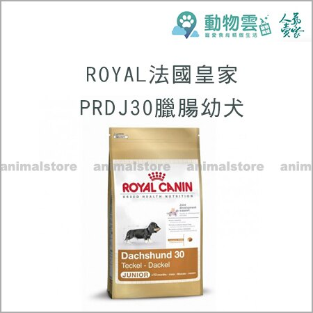 ROYAL法國皇家~PRDJ30臘腸幼犬1.5kg