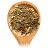 Tea Forte 罐裝茶系列 - 金薑檸檬草茶 Ginger Lemongrass 1