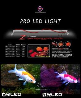[第一佳水族寵物]台灣雅柏UPZ系列[1尺30cm]LED超薄增艷跨燈紅燈(龍魚、血鸚鵡都適用)免運