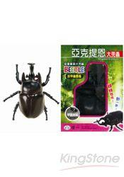 亞克提恩大兜蟲(甲蟲圖鑑1張)