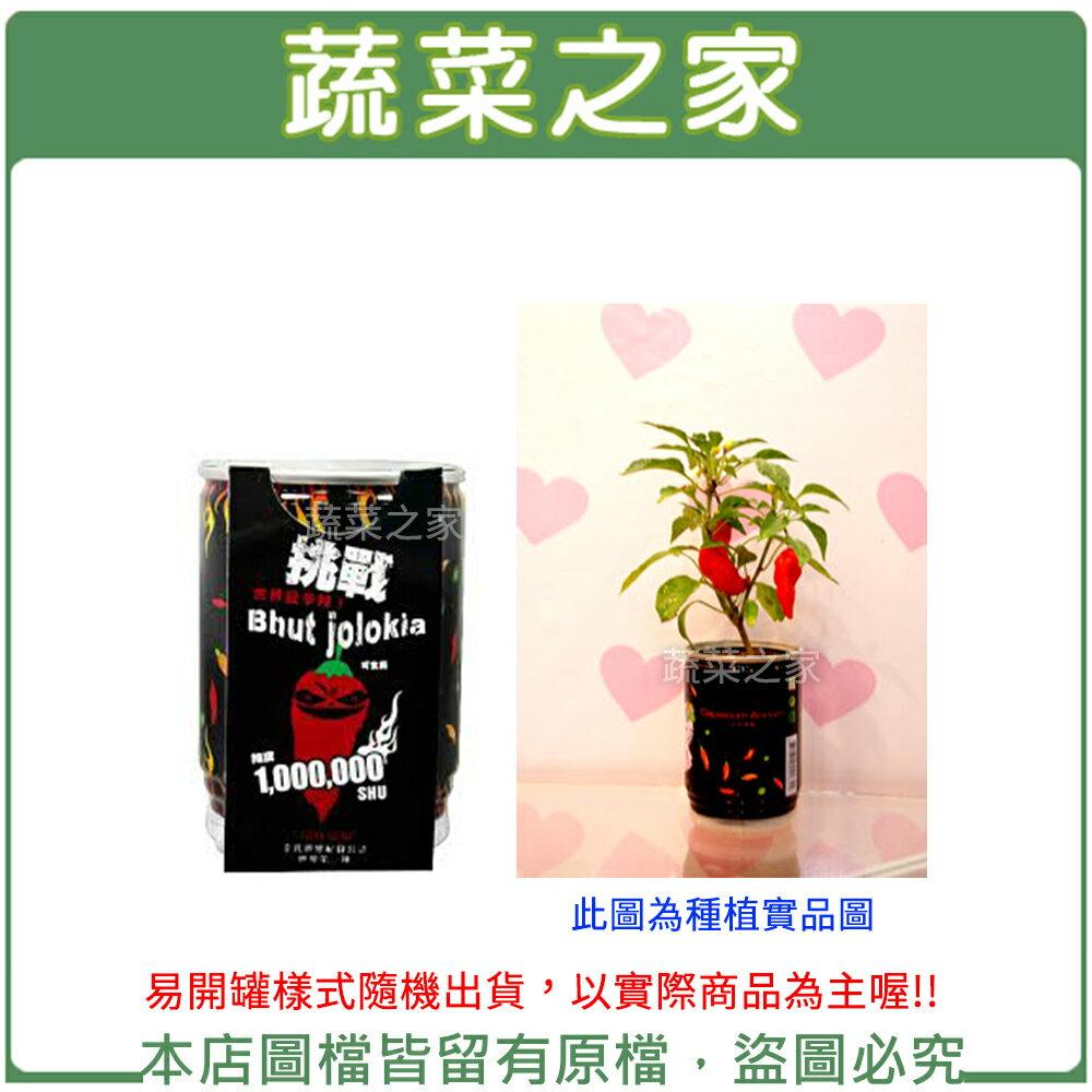 【蔬菜之家004-E15】iPlant易開罐花卉-鬼椒