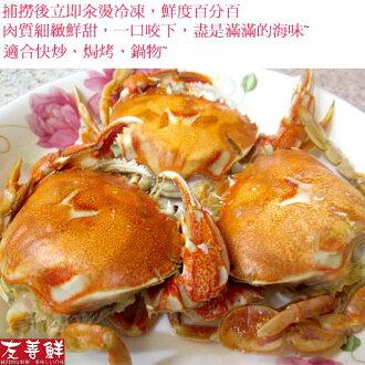 【友善鮮】熟凍爆卵牛蹄蟹母蟹3隻組(80g~110g±10%/隻)10200025(冷凍商品)