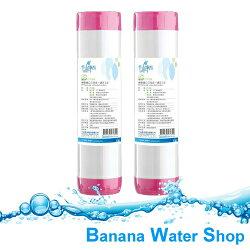 【Banana Water Shop】千山淨水 CT-G6 精密進口三效合一濾芯(2入裝) ★免運費