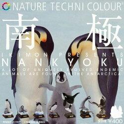 小全套5款【日本正版】NTC圖鑑 南極大陸生命紀行 扭蛋 轉蛋 擺飾 南極動物 - 640011
