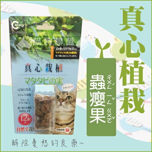 +貓狗樂園+Canary【真心栽植。蟲癭果。12入】$136