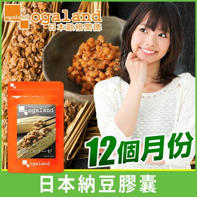 納豆 (納豆激脢) 紅麴膠囊 ✡ 滋補強身 健康保健 【共12個月份】 0