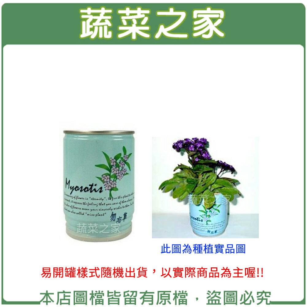 【蔬菜之家004-E23】iPlant易開罐花卉-勿忘草