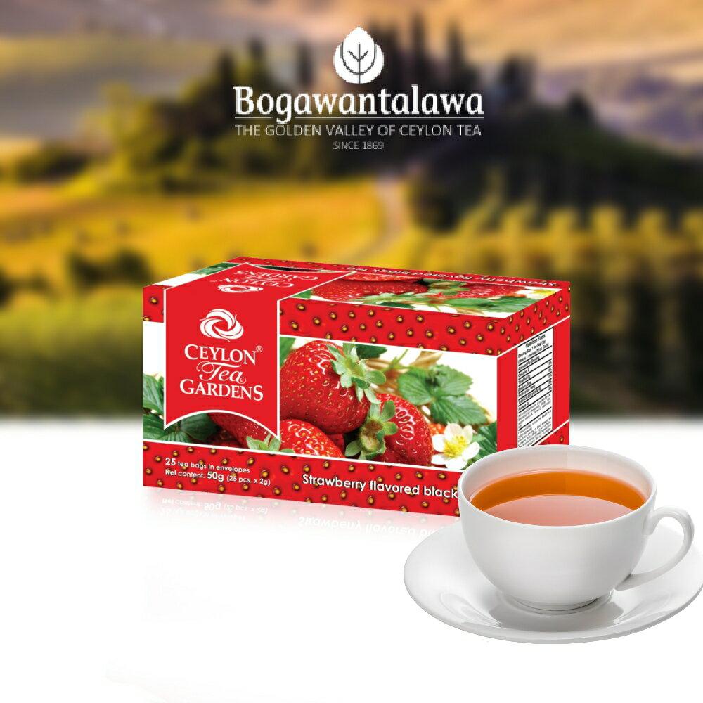 <br/><br/>  BPL錫蘭黃金谷 草莓風味紅茶<br/><br/>