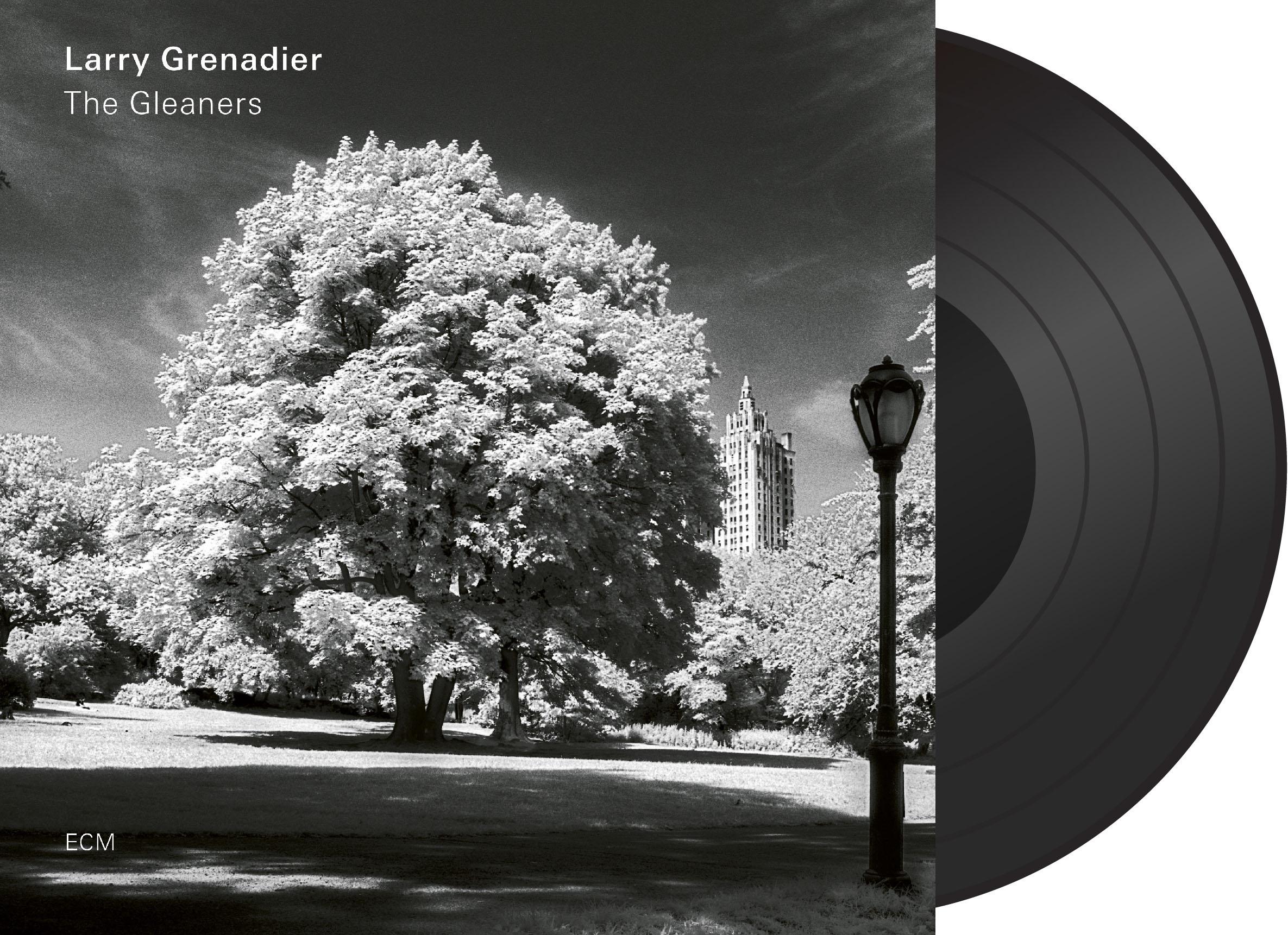Larry Grenadier: The Gleaners (Vinyl LP) 【ECM】 1