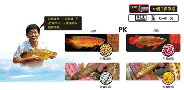 [第一佳水族寵物]新加坡艾柯仟湖WL092LED水中光曬美色燈56cm2尺免運
