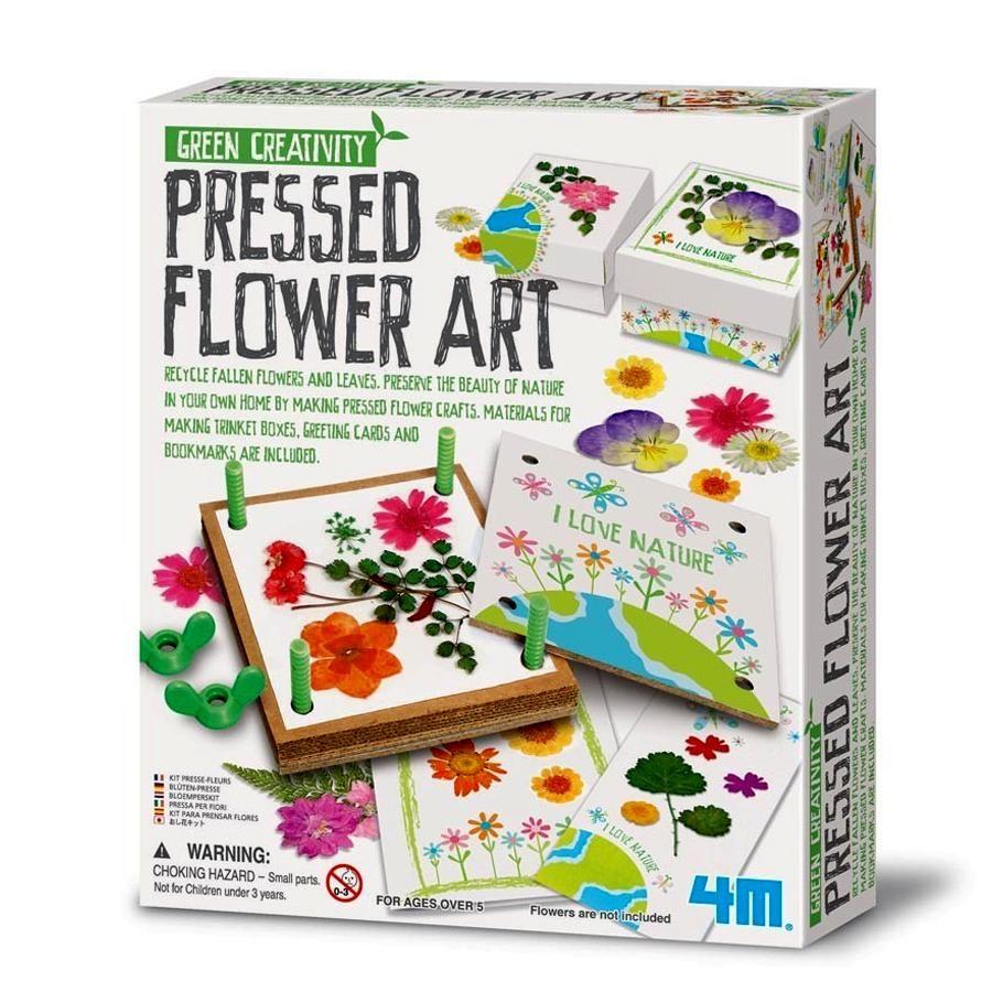 【 4M 美勞創作】花花世界 Pressed Flower Art