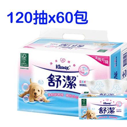 舒潔拉拉炫彩抽取式衛生紙 (120抽/60包/箱)