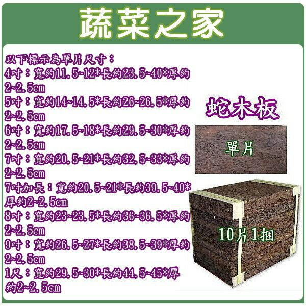 【蔬菜之家】6吋蛇木板(單片裝、10片/捆兩種規格可選)