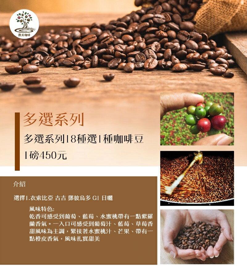 [微美咖啡]多選系列17種選1種,1磅450元,世界各國 咖啡豆,滿500元免運,新鮮烘焙