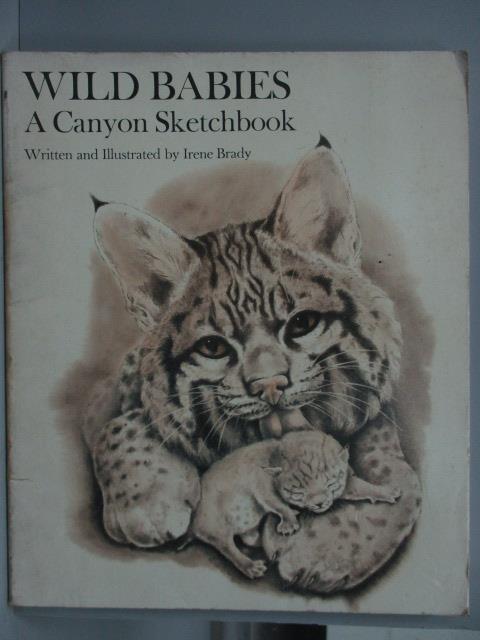 ~書寶 書T8/藝術_WFP~Wild Babies_A Canyon Sketchboo