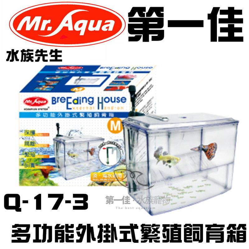 ^~第一佳水族寵物^~ 水族先生MR.AQUA 多 外掛式繁殖飼育箱 Q~17~3 M
