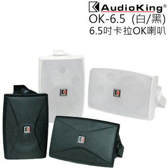 卡拉OK喇叭 ★ AUDIO KING OK-6.5 6.5吋 公司貨 0利率 免運