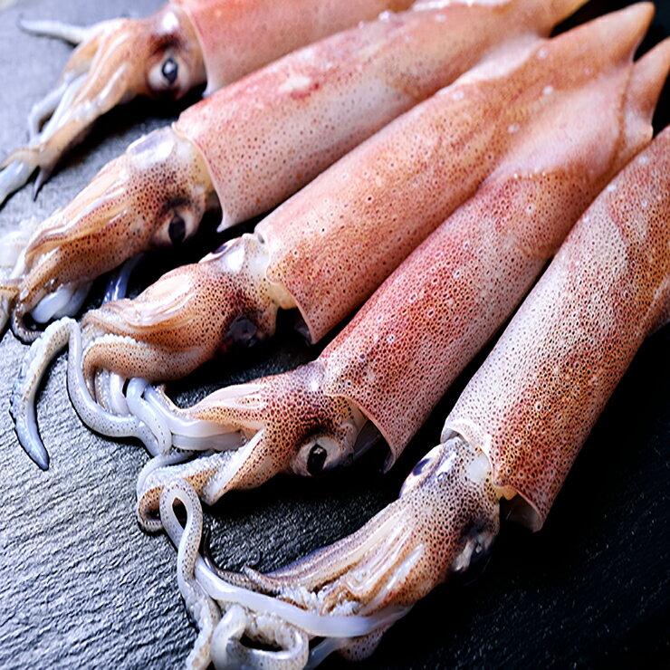 【良墨卷】布袋港第一家鮮嫩生小卷  特大15-20cm  新鮮活體急速冷凍 小卷/小管/透抽  300g/包