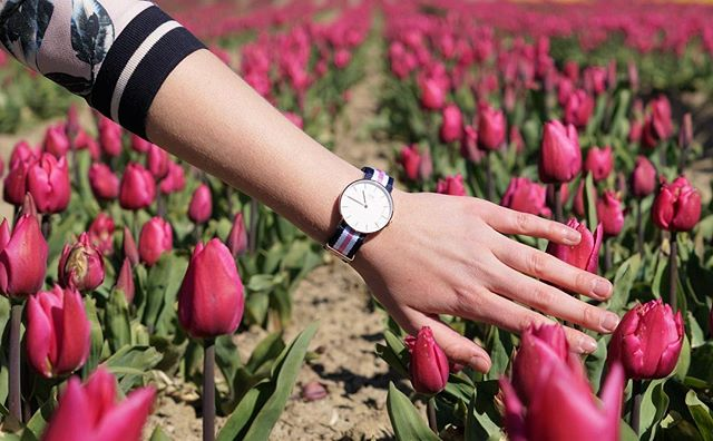 【Daniel Wellington】DW手錶CLASSIC SOUTHAMPTON 36MM(免費贈送另一組表帶) 7