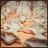 手工黑豬肉水餃【荷蓮御家】▶路路直播專屬★滿餡爆汁水餃7袋140顆入●飢餓剋星 二種組合● 吃貨免驚 5
