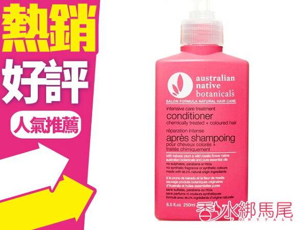 澳洲ANB護色養髮精油護髮素250ml無矽靈◐香水綁馬尾◐