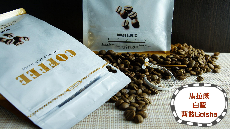【威豆精品咖啡】馬拉威.白蜜.藝妓Geisha / 半磅 / 咖啡豆 / 中焙@團購優惠中@ 0