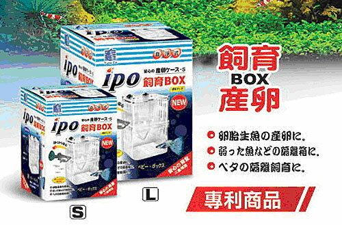 孔雀魚坊.IPO - 飼育繁殖盒