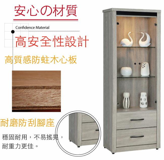 【綠家居】皮斯 現代2.7尺二門二抽展示櫃/收納櫃