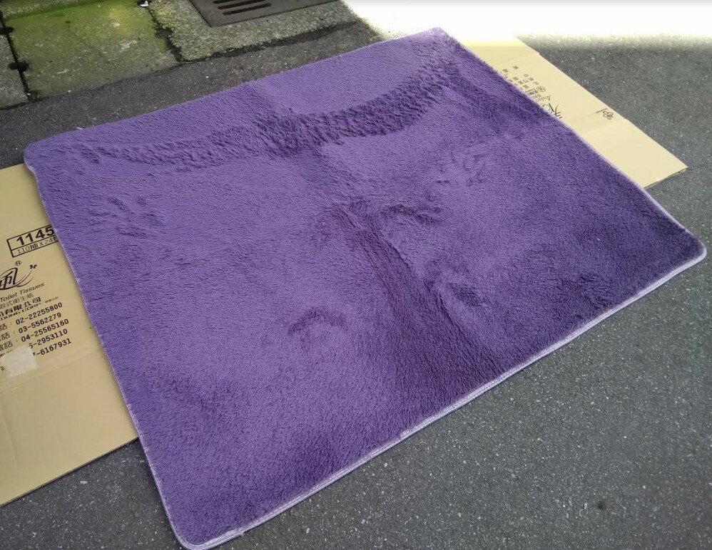 五折出清~ 5折出清~ 只有一條 免運 特價出清 紫灰色 120*140 CM 絲毛地毯