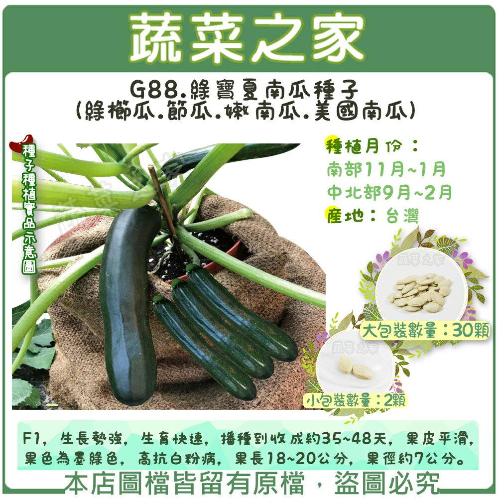 【蔬菜之家】G88.綠寶夏南瓜種子(綠櫛瓜.節瓜.嫩南瓜.美國南瓜) 2顆、30顆(共有2種包裝可選)