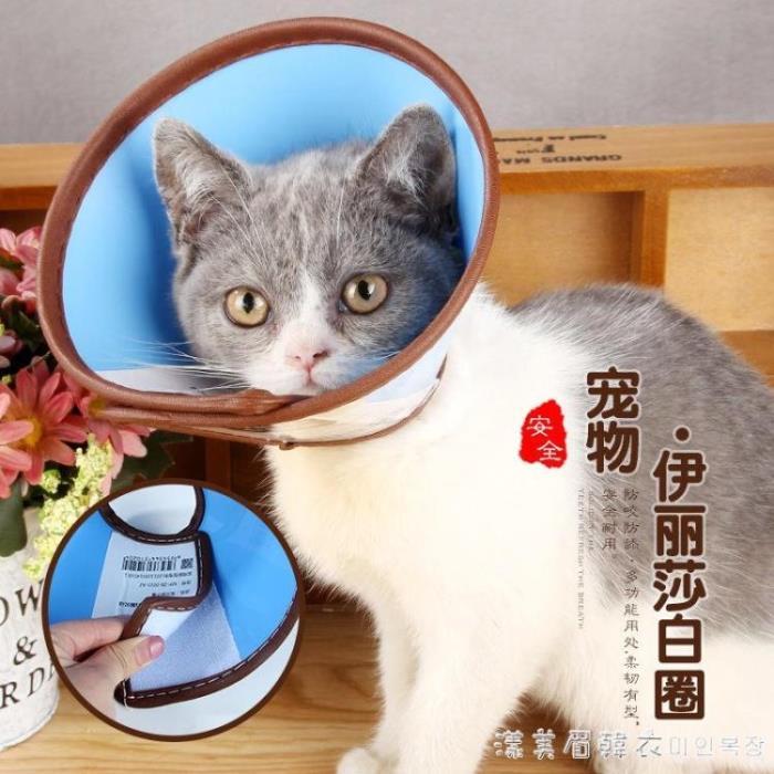 伊麗莎白彩色狗項圈狗頭套貓咪項圈狗脖套貓頭套防咬防舔寵物用品